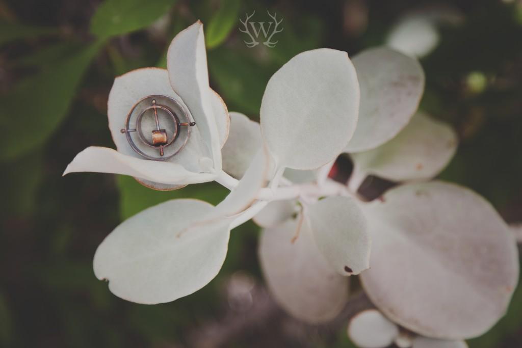 Wilma Kotze Photography|Susan Spangenberg Jewellery